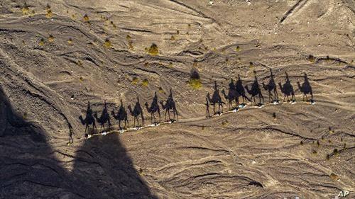 сенки во пустина во Израел